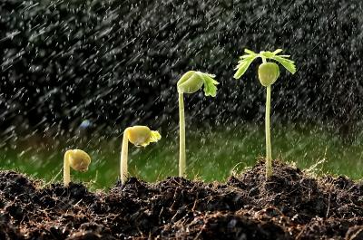 la lluvia tambien es un recurso