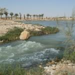 Riyadh river 2