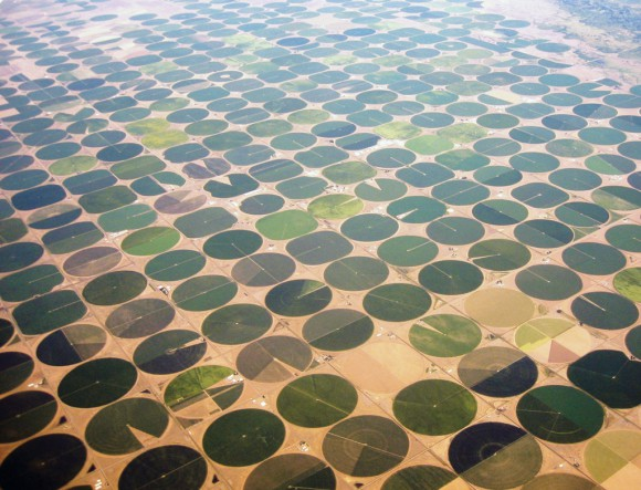 Valley-crop-circles