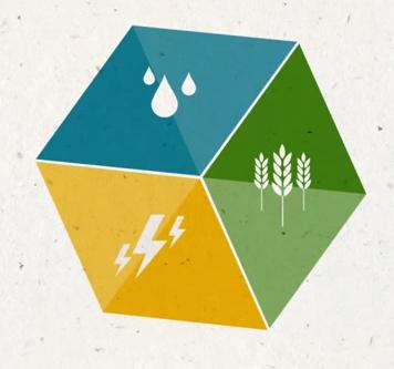 Trinomio agua, energía y alimentos