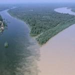 Confluencia de rios_Drava y Danubio2