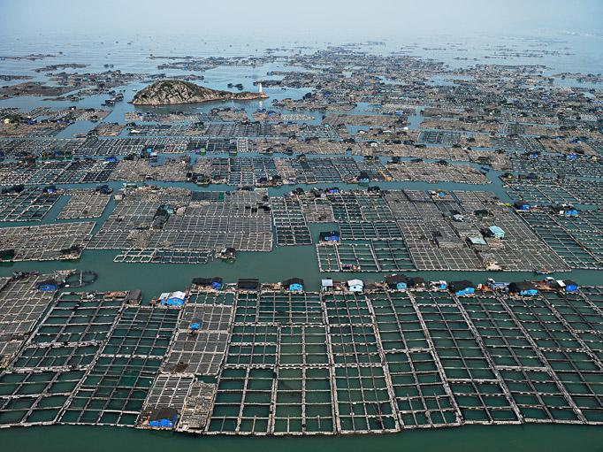 Watermark_marine aquaculture