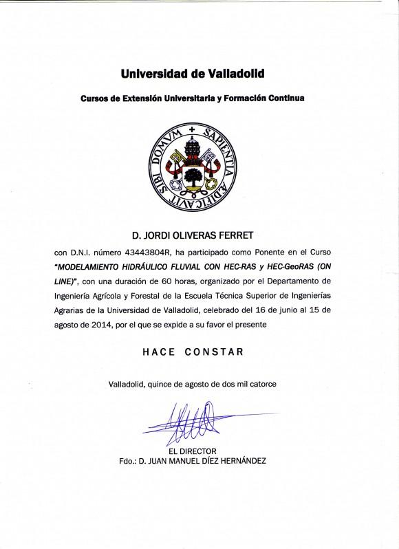 Certificado_UVa_2014